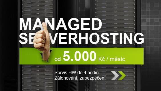 Managed serverhosting - Servis HW do 4 hodin, Zálohování, zabezpečení